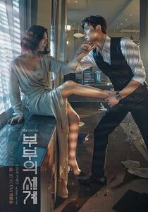 韓国ドラマ【夫婦の世界】全話収録 Blu-ray ブルーレイ※2-3日発送
