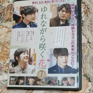 韓国DVDゆれながら咲く花全12枚