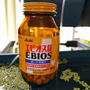 エビオス錠 100錠 PSB ゾウリムシ 培養 増殖 ビーシュリンプ ヌマエビ メダカ のおやつに 天然素材 ビール酵母 医薬部外品 送料94円