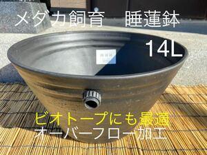 メダカ飼育 睡蓮鉢14L オーバーフロー加工