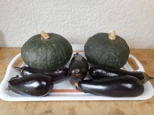 宮城から微農薬野菜・有機野菜(80サイズ)取れ過ぎたので お安く!!!
