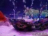 水槽用オブジェ 沈没船のオブジェ 長さ24㎝ 大型水槽に アクアリウム 魚の住みか ZI239