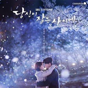 韓国ドラマ 「あなたが眠っている間に」 Blu-ray版 全話収録