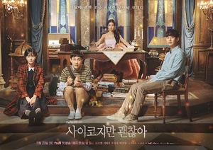 韓国ドラマ 「サイコだけど大丈夫」 DVD版 8枚セット 全話収録