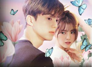 韓国ドラマ 「わかっていても」 Blu-ray版 全話収録