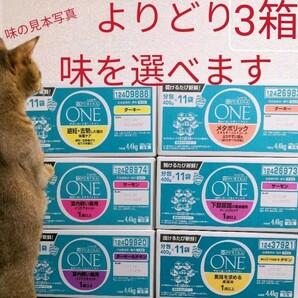 在庫整理中につき9/21日頃出荷予定 よりどり3箱購入ページ 1箱4.4kg(400g11袋)ピュリナワン 猫