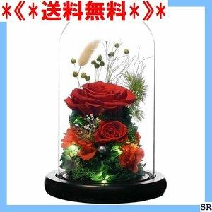 《*送料無料*》 RicoRichプリザーブドフラワー枯れない花観葉植物 レッ 彼女ドライフラワーガラスポットり レゼント 101