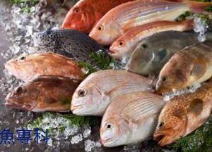 魚専科 4キロ 鮮魚&干物お試しセット 40種類以上 送料一律 豊後水道直送 冷凍発送 他鮮魚、干物アリ!同封発送可能 お得