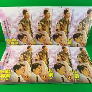 愛と笑いの大林洞 ‐ビッグ・フォレスト DVD 全8巻セット