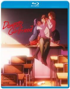 【送料込】ドメスティックな彼女 全12話 (北米版 ブルーレイ) Domestic Girlfriend blu-ray BD