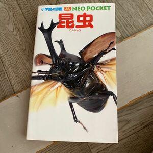 昆虫 (小学館の図鑑 NEOポケット)