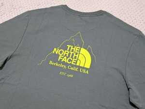 新品 送料無料 The north face Biner Graphic 4 Tee Agave Green Mサイズ(日本Lサイズ相当)ノースフェイス Tシャツ