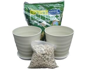 送料無料(一部除く)観葉植物植え替えセット 8号 鉢土皿鉢底