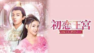 中国ドラマ 華流ドラマ 【初恋王宮 ~お妃さまと呼ばないで~】 Blu-ray 全話 送料無料