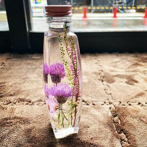 ハーバリウム アザミ ネジバナ 山野草 パルファム瓶 Angelarium 秋色 ハロウィン パープル ドライフラワー