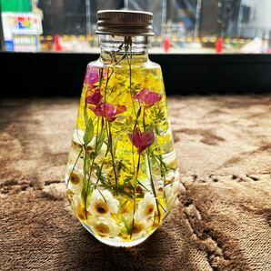 ハーバリウム しずく瓶 菜の花 ユウゲショウ 花簪 山野草 Angelarium