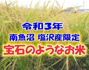 令和3年度産 新米ζ○新潟南魚沼 コシヒカリ 塩沢産限定○ζ 10kg 〇