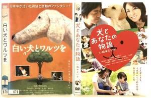 中古DVD2作品DVD2枚  白い犬とワルツを 犬とあなたの物語  仲代達矢 若村麻由美 /大森南朋 松嶋菜々子  他