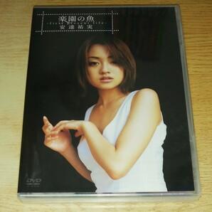 DVD 未開封 安達祐実/楽園の魚~first present file
