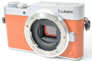 難あり品・撮影や保存OK パナソニック Panasonic LUMIX DC-GF9 ボディ ♯A1175