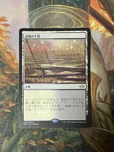 MTG 湿地の干潟 日本語 1枚