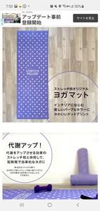 ヨガマット【新品】オンキョーストレッチ枕ヨガマット