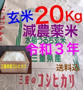 減農薬米 令和3年新米 三重県産コシヒカリ 玄米20キロ 10kg×2袋 全国送料込