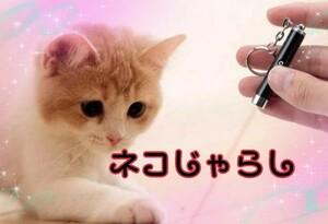 猫のおもちゃ 猫じゃらし【本体カラー:ブルー】電池付き