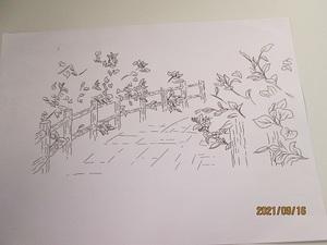 ふしぎな花楽部 押し花 作成 49額ガラス付き イラスト風 花の小路