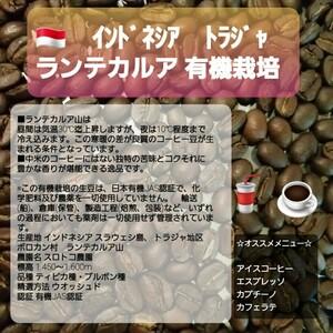 自家焙煎屋 コーヒー豆 インドネシア トラジャ ランテカルア 300g