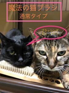 普通タイプ 魔法の猫ブラシ 猫犬様の健康を考えたブラシ 久々に登場!