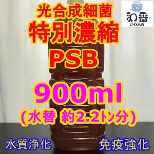 送料220円 光合成細菌PSB900ml バクテリア めだか らんちゅう 金魚 熱帯魚 グッピーにミジンコゾウリムシクロレラ培養
