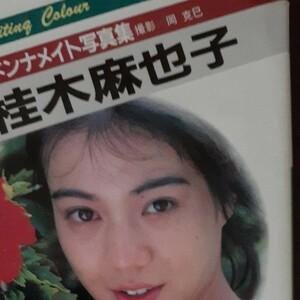 桂木麻也子 マドンナメイト写真集