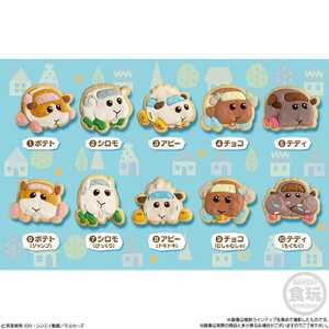 PUI PUI モルカー COOKIE MAGCOT 全10種類