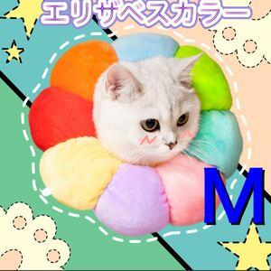 人気です♪エリザベスカラー Mサイズ 犬/猫 傷舐め防止 術後ケア 保護カバー