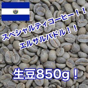 スペシャルティコーヒー!エルサルバドル シティオ・デ・マリア農園!生豆850g!