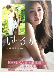 はるか HARUKA 1st写真集 初回限定特典 生写真付き
