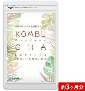 コンブチャ KOMBUCHA 3ヵ月分 サプリ シードコムス 紅茶キノコ