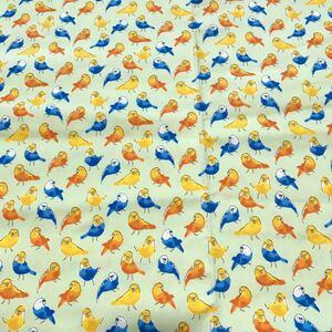 小鳥柄 黄緑色 ツイル生地 105×100