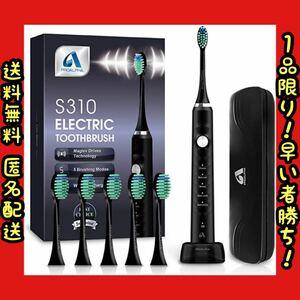 電動歯ブラシ 音波歯ブラシ ソニック USB充電式 IPX7防水 替えブラシ5本