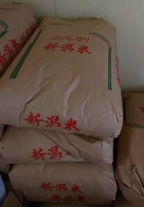 令和2年度 新潟産 コシヒカリ100% 玄米 20kg 送料無料