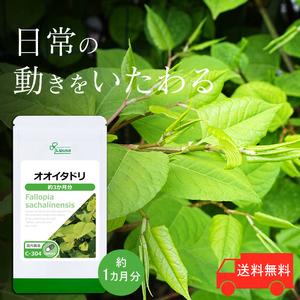 【リプサ公式】 オオイタドリ 約3か月分 C-304 サプリメント サプリ 健康食品 送料無料
