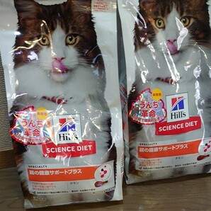 ヒルズ 【1.6kg×2袋】腸の健康サポートプラス
