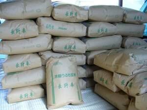 新米 令和3年 長野県産コシヒカリ玄米30kg