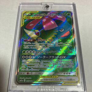 フシギバナ&ツタージャGX SR スーパーレア ポケモンカードゲーム ポケカ sm11a リミックスバウト 065/064