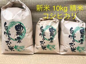 等級米 新米 令和3度年 静岡県産 コシヒカリ こしひかり 精米 10kg(5kg×2個も可) 減農薬 農家直送【送料無料】