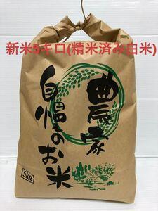 令和3年2021年収穫新米 コシヒカリ精米済み白米5キロ 三重県産