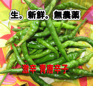 Spicy raw green pepper 300g pesticide-free raw pepper postage collection fresh