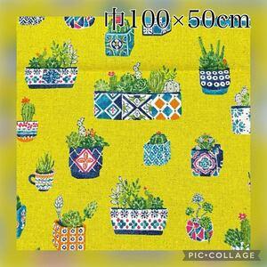 巾100×50cm 綿麻キャンバス 植物 サボテン 多肉種 プリント 生地