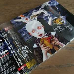 ★KORN「SEE YOU ON THE OTHER SIDE」リミテッド・デラックス・エディション 国内盤帯付き2枚組CD コーン ニューメタル 初回限定盤